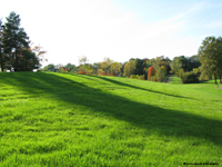 Latimer Hill